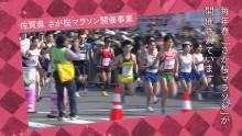 さが桜マラソン開催事業