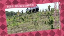 第66回全国植樹祭
